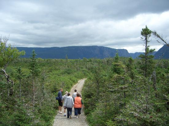 trail to Western Brook Pond, Gros Morne National Park, Newfoundland, CANADA