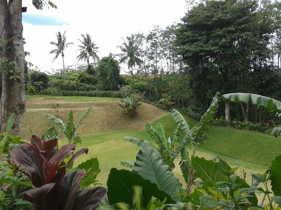Maya Ubud Resort & Spa: view looking out from our villa