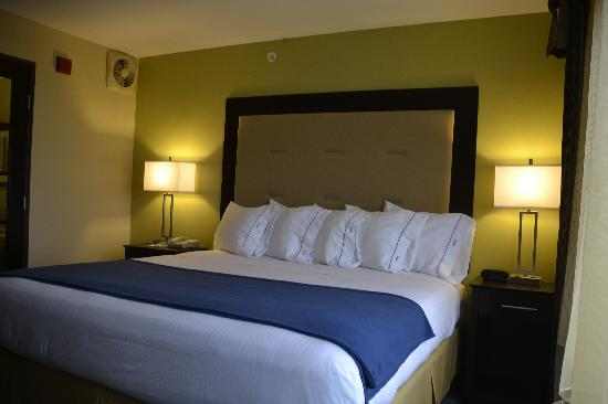 Holiday Inn Express & Suites: King Bed