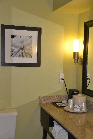Holiday Inn Express & Suites: Bathroom