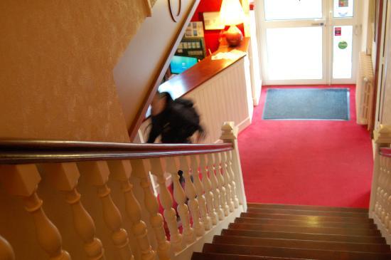 Hotel l'Oree du Bois : recepción desolada