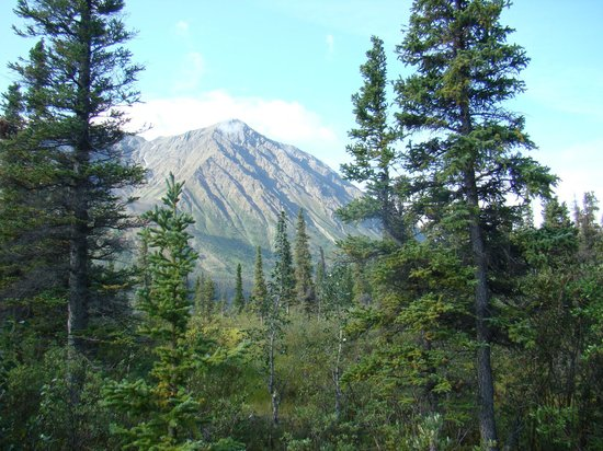 Haines Junction, Canadá: unknown peak, St. Elias Mountains, Kluane National Park, Yukon, CANADA