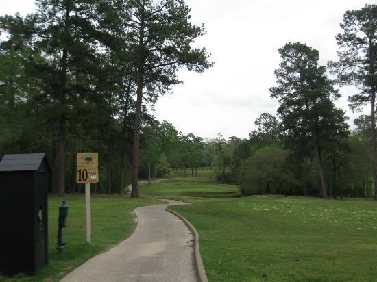 Wedgewood Golf Course : Heading off the back, #10
