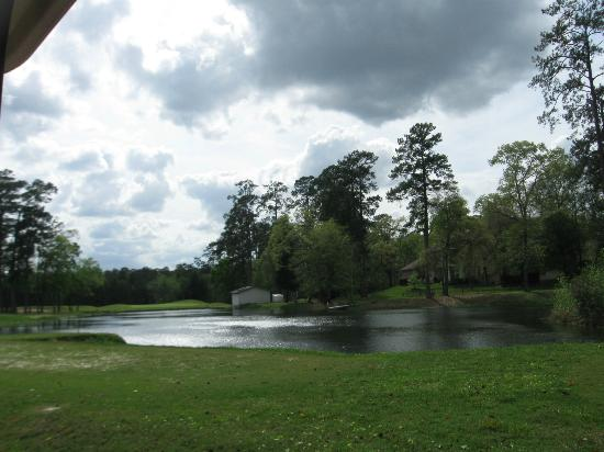 Wedgewood Golf Course: par 3 carry over water