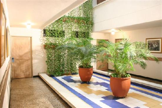 Jardin interior picture of don jaime hotel cali for Casas con jardin interior