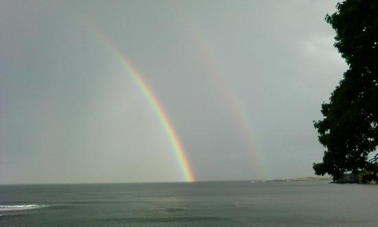 The 8th Maine: Double Rainbow