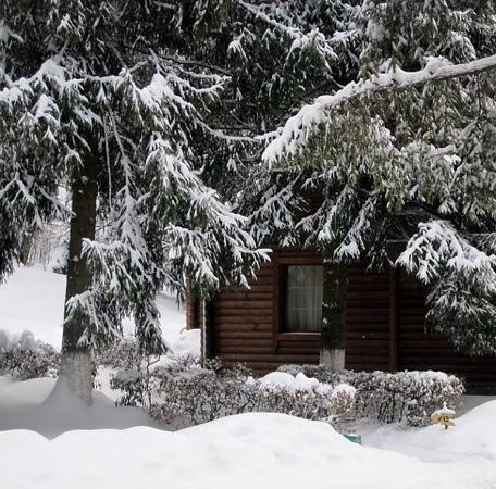Shayan, Ukraine: январь 2012