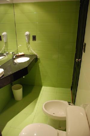 Sur Hotel: baño