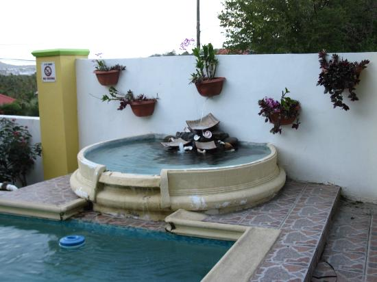 Habitat Terrace: Lovely Pool in the garden