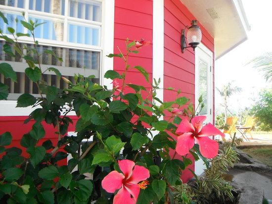 Rainbow Inn: Hibiscus Villa
