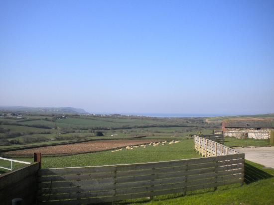 Wooldown Holiday Cottages: View from room