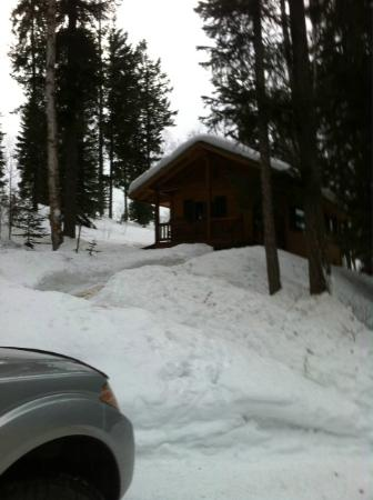 Hillside Lodge and Chalets: a neigbhoring cabin