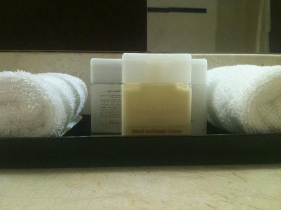 St. Regis Hotel: Amenities
