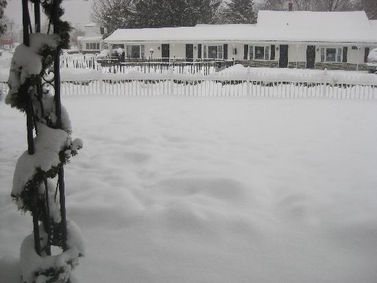 Knotty Pine Motel: Winter