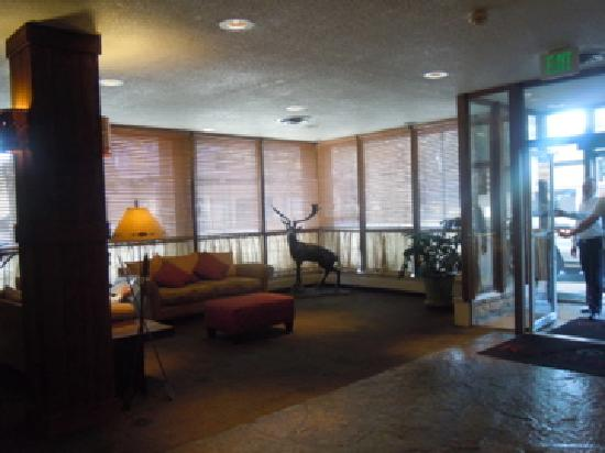 Ramada Denver Downtown : lobby