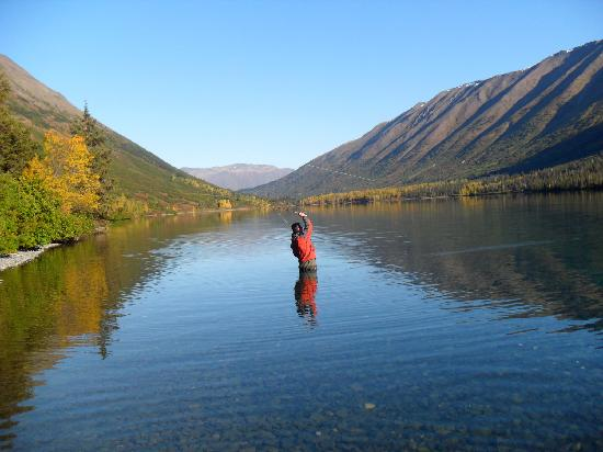 Fishology Alaska Soldotna 2018 All You Need To Know