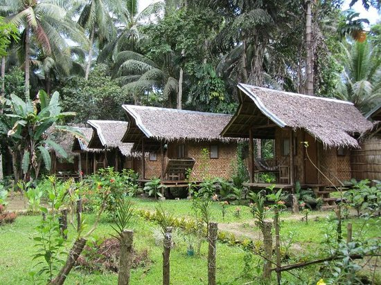 NIPA HUT VILLAGE - Updated 2019 Prices, Lodge Reviews, and Photos (Loboc, Philippines) - TripAdvisor