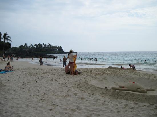 White Sand Beach: turle