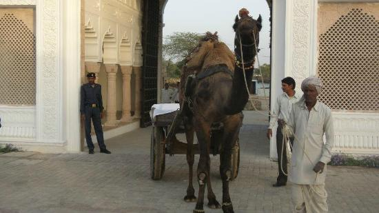 Talabgaon Castle Heritage Resort: Camel Cart