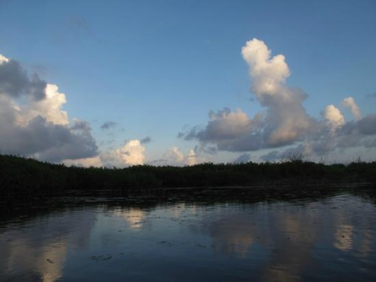 Mexico Silvestre Cozumel Wilderness Outfitter - Day Tours: Beautiful afternoon the lagoons