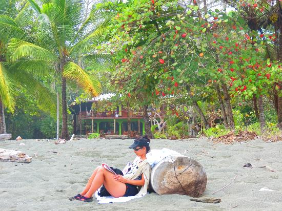 The Pearl of the Osa: Beach area(wife) with dining area/Hotel in background