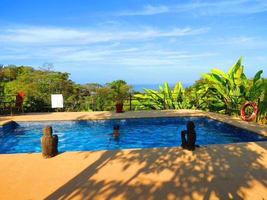 Alma de Ojochal : El Bueno Vista Hotel pool