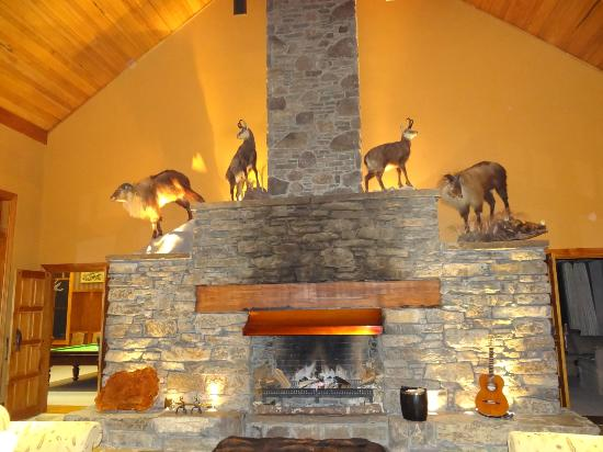 Treetops Lodge: Fireplace inside the main lodge