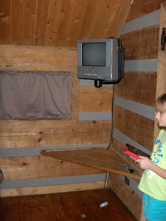 Riveredge RV Park: Inside camping cabin tv