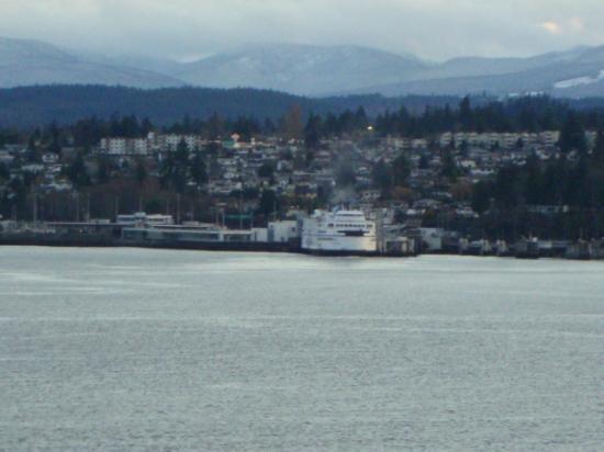 Stephenson Point Seaside B&B: BC Ferry Dock