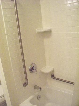 Fairfield Inn & Suites Winnipeg: Shower / tub