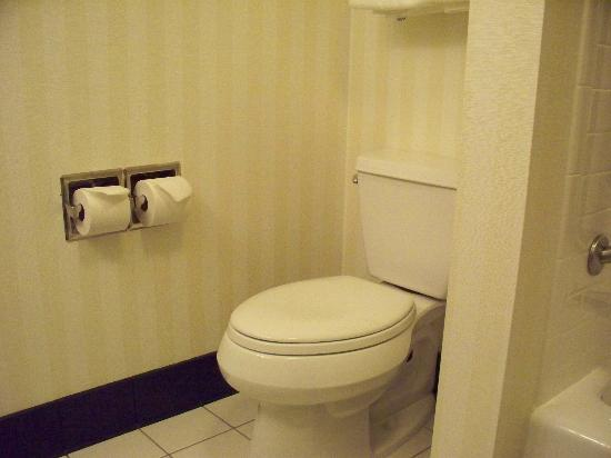 Fairfield Inn & Suites by Marriott Winnipeg: Toilet
