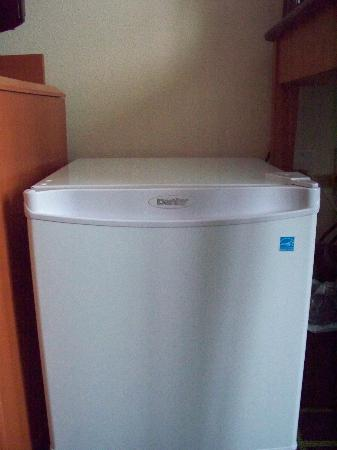 Fairfield Inn & Suites by Marriott Winnipeg: Mini Fridge