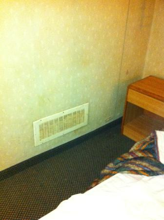 Grand Rapids Inn: Stains on the walls. The entire room looked like this.