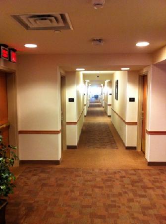 Prairie Knights Casino & Resort: Another Hall View.