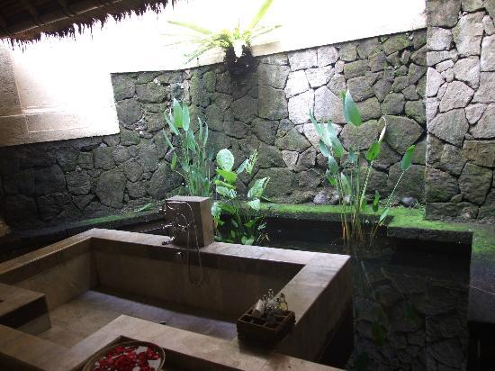 Sunken bath tub in a fish pond picture of komaneka at for Bathtub fish pond
