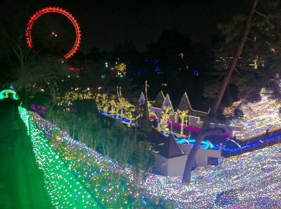 Seibuen Amusement Park : 遠くに観覧車が見えます