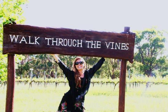 Taste The South Wine Tours: Doing as told on the sign ....