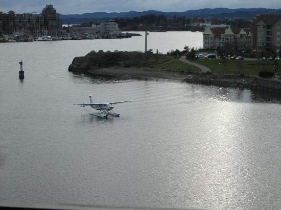 فيكتوريا ريجنت واتر فرونت هوتل آند سويتس: Typical Harbor Scenes