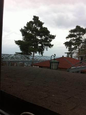 Hotel Myslivna: balcony view