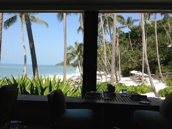 Four Seasons Resort Koh Samui Thailand: вид из кафе