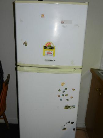 Magnolia Court Boutique: fridge