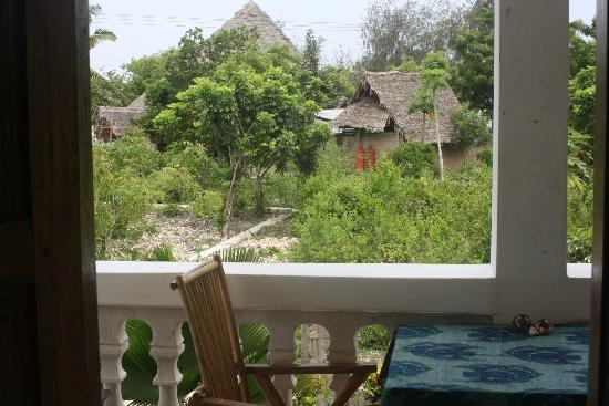 Kizi Dolphin Lodge: View from hotel