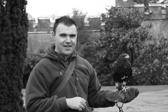Dromoland Castle Hotel: Falconry at Dromoland Castle