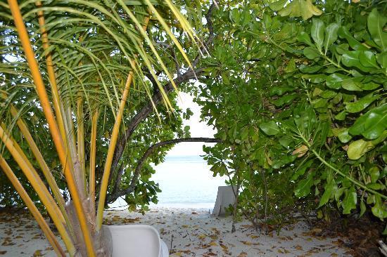 Asdu Sun Island: Asdu davati al bungalow 112