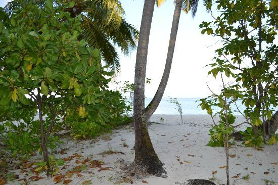 Asdu Sun Island: Asdu spiaggia lato est