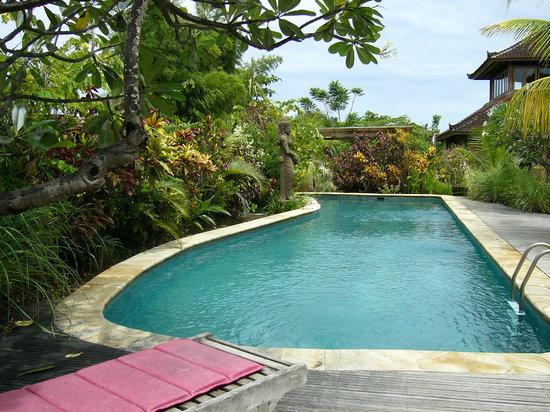 Villa Prana Bali: Salt Water Pool
