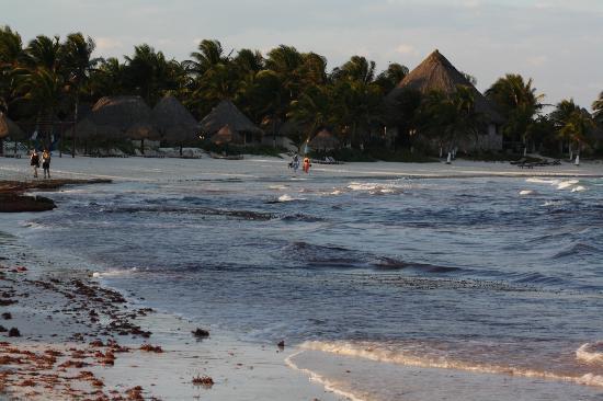 Casa Amor Del Sol : Ziggy Beach