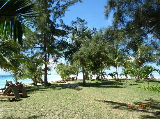 The Reef Dive Resort: beach and lawn at north end of island where sand bank begins