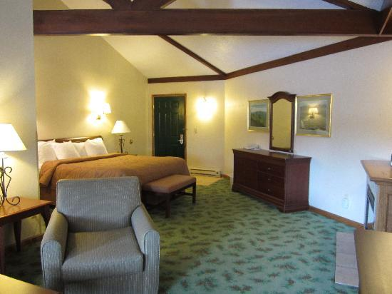 Quality Inn Lake Placid: Treehouse Suite