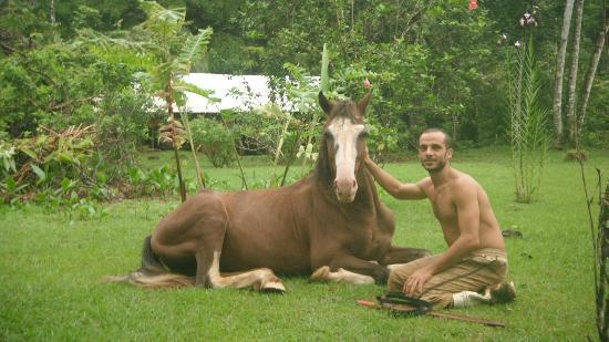 Casa Pequeña : este caballo se llama Bili Ru